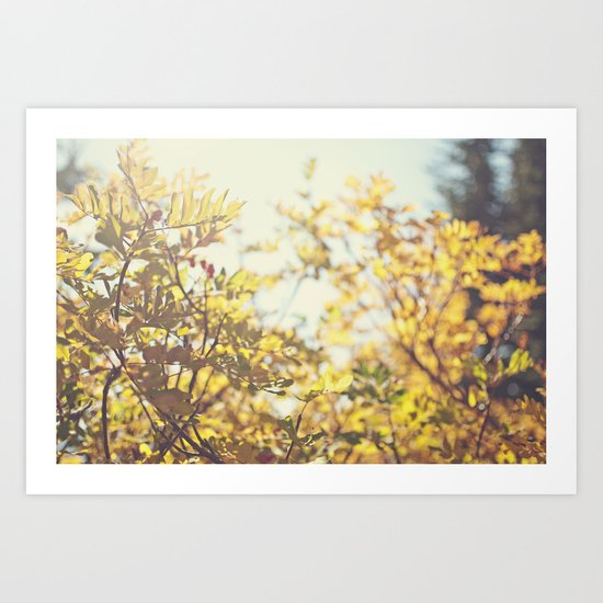 Fading Fall Leaves Art Print