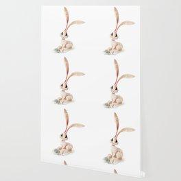 Arctic Hare Wallpaper