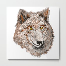 Wolf vector illustration Metal Print