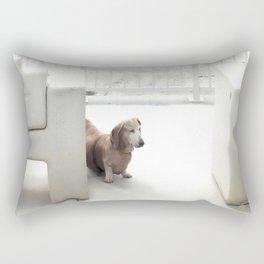 Dachshund, Carlsbad, California Rectangular Pillow
