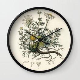 Foxglove (Digitalis purpurea)  from Medical Botany (1836) by John Stephenson and James Morss Churchi Wall Clock