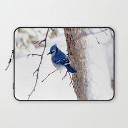 Blue Jay in winter 2 Laptop Sleeve