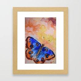 Butterfly 13 Framed Art Print