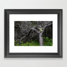 Forest Spirit Skull Framed Art Print