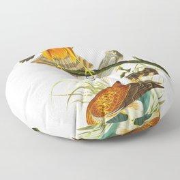 Marsh Hawk Floor Pillow