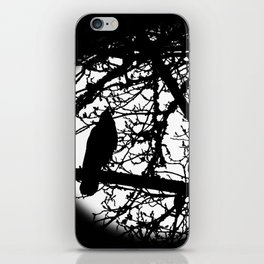 Watchful Bird iPhone Skin
