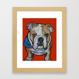 Johnny the English Bulldog Framed Art Print