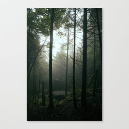 Out of the Dark Canvas Print