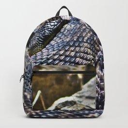 Sunbathing Backpack