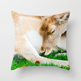 Sleeping Deer Throw Pillow