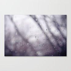 Rain drops. Canvas Print