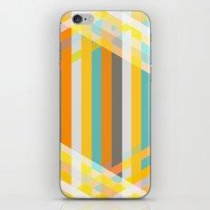 DecoStripe iPhone & iPod Skin