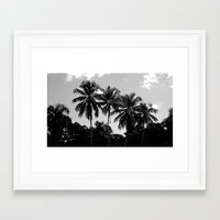 puerto rico Framed Art Prints featuring Palm Trees Puerto Rico by Derek Delacroix