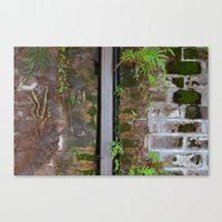 moss Canvas Prints featuring Moss by ephemerality