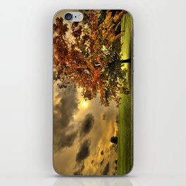 Red Maple Tree  iPhone Skin