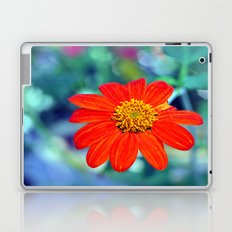 Mexican Sunflower Laptop & iPad Skin