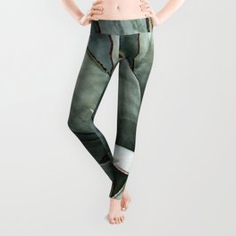 Botanical Succulents // Dusty Blue Green Desert Cactus High Quality Photograph Leggings