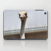 ostrich iPad Cases featuring Ostrich :) by IowaShots