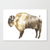 bison Canvas Prints featuring Bison by THE AESTATE