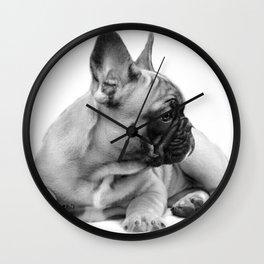 FrenchBulldog Puppy Wall Clock