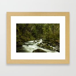 Rios de Oregon 1 Framed Art Print