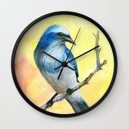 Scrub Jay Wall Clock