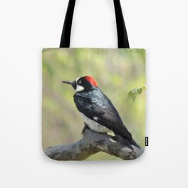 Acorn Woodpecker At Rest Tote Bag