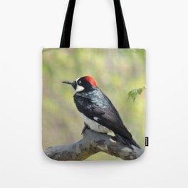 Acorn Woodpecker At Rest Tote Bag