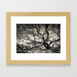 Family Tree Framed Art Print