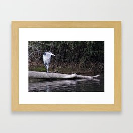 Hangin' Around Framed Art Print