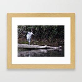 Hangin' Around Framed Art Print