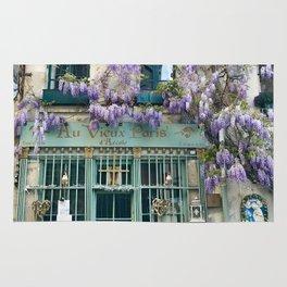 Au Vieux Paris Rug