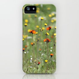 Blooming summer field iPhone Case