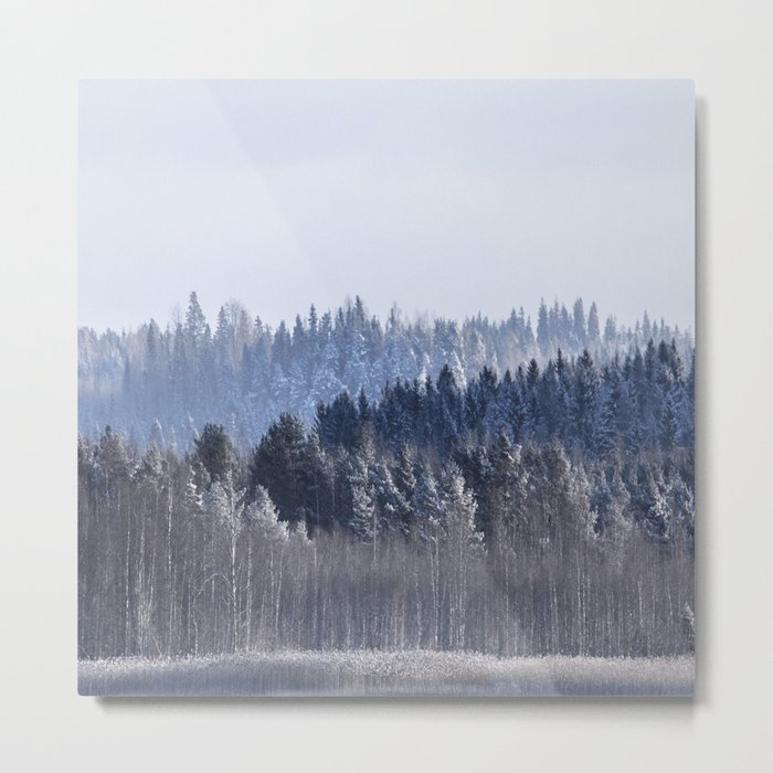 Blue shades in cold winter morning Metal Print