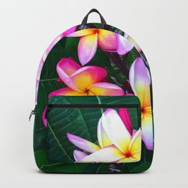 Plumeria Flowers Backpack