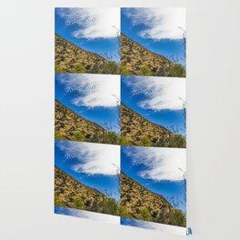 Clouds Stretching Across a Deep Blue Sky in the Anza Borrego Desert, California, USA Wallpaper