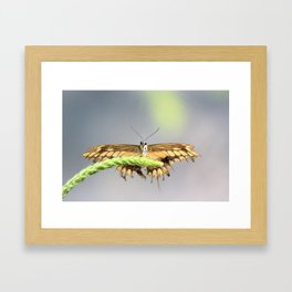 Well, Hello There Framed Art Print