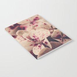 hydrangea - pink freckles Notebook