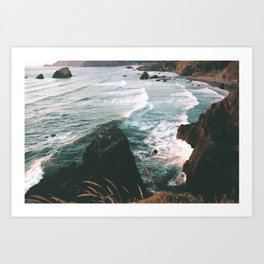 Oregon Coast IV Art Print