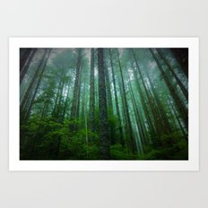 Misty Mountain Forest Art Print