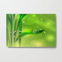 Bambus mit Wassertropfen Metal Print