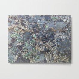 Mossy Rock Metal Print