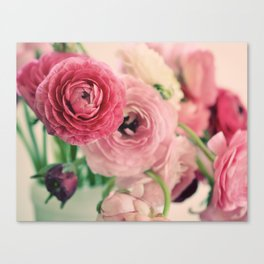 Ranunculus in Pink Canvas Print