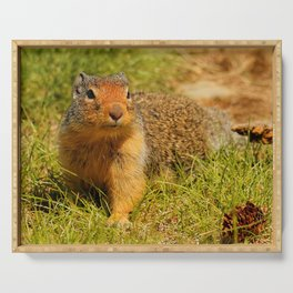 Twitchy Nosed Columbian Ground Squirrel Serving Tray