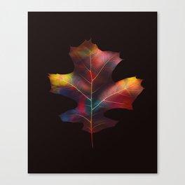 Rainbow Leaf Canvas Print