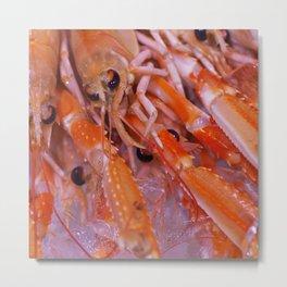 #Gourmet #Shrimps #close up Metal Print