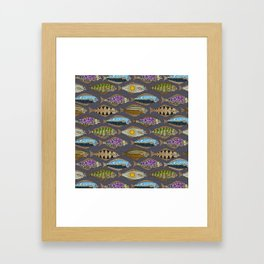 Alaskan halibut dusk Framed Art Print
