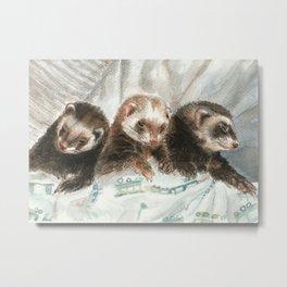 Lovely ferrets Metal Print
