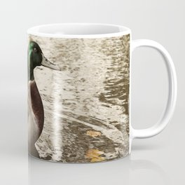Sitting Duck waits Coffee Mug