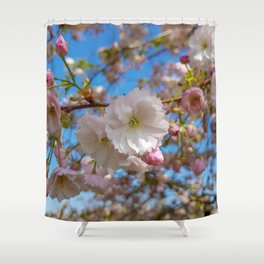 Cherry Blossoms at Kew Gardens Shower Curtain